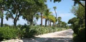 The_Island_Club_Jungle_Trail_Vero_Beach_0