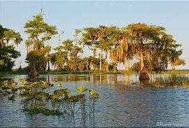 Fun Facts About Florida & the Treasure Coast