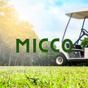 Micco moving company