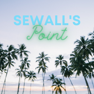 Sewall's Point Movers