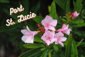 Port Saint Lucie Movers